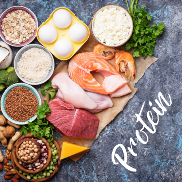 Focus On Food: Protein