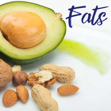 Focus On Food: Fats