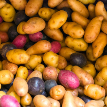 Diabetes Problem Food: Potatoes