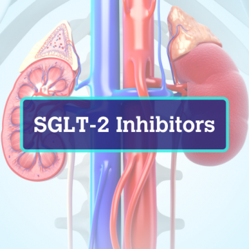 What Does a SGLT2 Inhibitor Do?